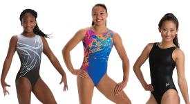 2430dcd9d532d DGS -Gymnastics Grips, Gymnastics Mats, Gymnastics Equipment ...