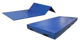 Used Gymnastics Mats For Sale >> Dgs Gymnastics Grips Gymnastics Mats Gymnastics Equipment