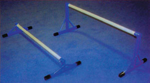 Floor Bar Trainer